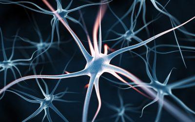 EEG-neurofeedback for optimising performance